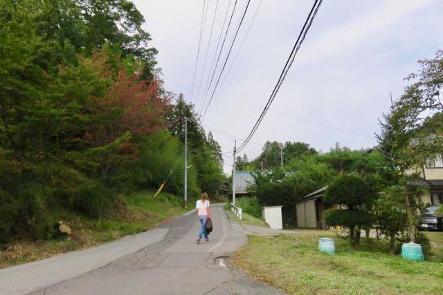 ダニちゃん 町へ